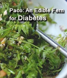 Know the health benefits you can get from Paco Leaves for your diabetes. Edible Ferns, Seaweed Salad, Healthy Tips, Health Benefits, Diabetes, Cabbage, Leaves, Wellness, Canning