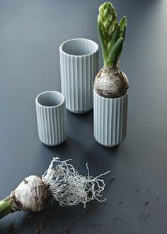 Lyngbyvaser lyngby vaser lyngby porselen