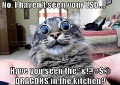 Hahahaaaaa!!!! :D