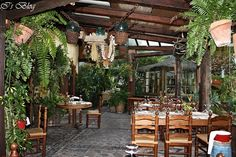 El Molino Blanco Tenerife, Places Ive Been, Pergola, Outdoor Structures, Outdoor Pergola, Teneriffe, Arbors