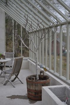 What Is a Conservatory? Large Greenhouse, Build A Greenhouse, Outdoor Rooms, Outdoor Living, Outdoor Decor, What Is A Conservatory, Greenhouse Supplies, Diy Pergola, Glass House