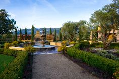 Regale Winery And Vineyards Goodeye Photography