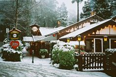 Christmas in July celebrations at the Cuckoo Restaurant in the Yarra Valley region Restaurant Deals, Top 10 Restaurants, Yarra Valley, Holiday Accommodation, Australia Living, Christmas In July, Countries Of The World, Bed And Breakfast, Olinda