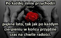 http://www.xdpedia.com/obrazki/po_kazdej_zimie_przychodzi_piekne_lato_12772.jpg