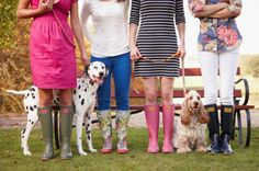 dogs & wellies!