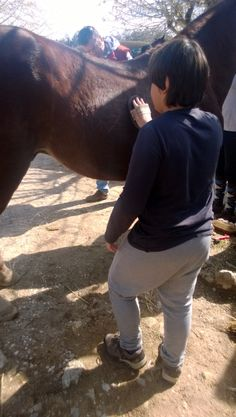 Relizar o maneio ao cavalo antes de trabalhar com ele: Promover a responsabilidade, autonomia e vinculação entre humano-cavalo.