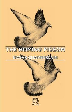 The Homing Pigeon (eBook) Pigeon Books, Homing Pigeons, Kindle, January, Movie Posters, Store, Ideas, Products, Film Poster