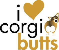 cant wait for my Corgi!