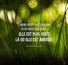 Citation du 12/01/2017  ________________________________    #spiritualité #citation #sagesse #paix #lumière #philosophie #amour #buddha  #bouddhisme #divin  #coeur #developpementpersonnel #etresoimeme #inspiration #motivation #namasté #zenstyle #meditation #namaste #univers #gandhi #dalailama  #compassion #zen #zenitude #confiance #confianceensoi #loidelattraction #pleineconscience #momentpresent