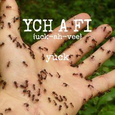 yck-a-fi-yuck