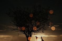 wedding, wedding photographer, photographer in Italy, wedding in Austria, beautiful wedding Italy Wedding, Vienna, Austria, Wedding Photography, Celestial, Sunset, Outdoor, Beautiful, Outdoors