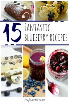 Get inspired with these fantastic blueberry recipes, including savory food, delicious blueberry drinks, gorgeous blueberry cakes and more!