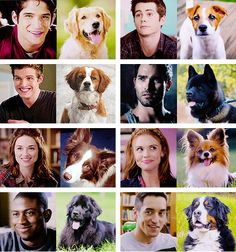 teen wolf characters and their dog equivalents. The only one I disagree with is Scott's, he needs something that can be super aggressive and protective but sweet.