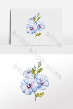 hand painted watercolor blue flowers elements #pikbest #watercolor #plant #element #illustration #illustrator #freebie #graphicdesign #graphicelements #freedownload #flower Watercolor Design, Blue Flowers, Free Design, Illustrator, Plant, Hand Painted, Graphic Design, Templates, Painting
