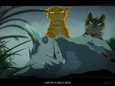 It's not your fault Fireheart, It's all TIGERCLAW'S fault because he wanted it to be Bluestar but NOOOOOO.. It had to be Cinderpelt! It just had to be her1