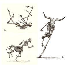 Anatomy Series: Angel, Minotaur, Mermaid & Centaur (4 Prints)