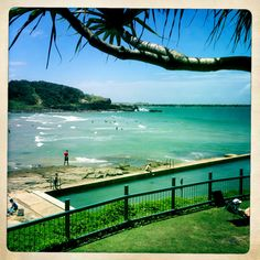 11 best yamba nsw australia images new south south wales coast rh pinterest com