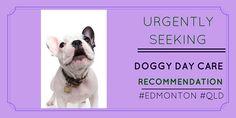 Pet owner seeking #doggydaycare #reviews http://petstayadvisor.com.au/ #EDMONTON #QLD
