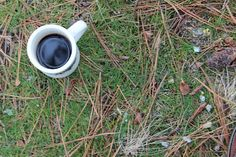 Chemex Coffee from Stumptown in the woods.