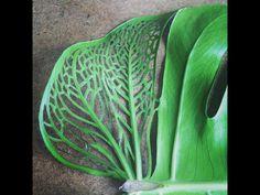 Leaf 2014. Plant Leaves, Colour, Plants, Art, Color, Craft Art, Kunst, Colors, Plant