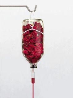 I need IV fluids STAT