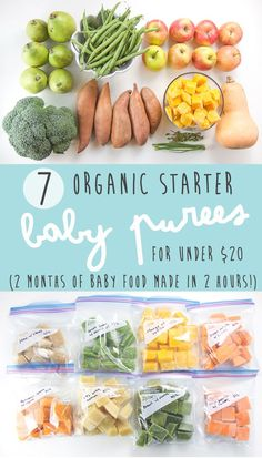 7 Organic Baby Food Recipes for Under 20 2 hours will last 2 months A complete guide to get your started making your own homemade baby food 4 months Baby Puree Recipes, Pureed Food Recipes, Healthy Recipes, Baby Food Puree, Apple Puree For Baby, Squash Baby Food Recipe, Butternut Squash Baby Food, Easy Recipes, Toddler Meals