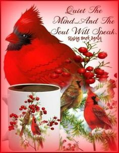 Solve cardinals jigsaw puzzle online with 42 pieces Cardinal Birds Meaning, Bird Meaning, Bird Quotes, After Life, Bird Pictures, Inspirational Thoughts, Inspiring Quotes, Pics Art, Wild Birds
