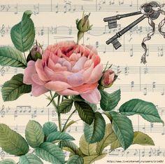 Gracias a  irn69 , he conseguido estos collages con rosas que hoy os comparto, me parecen absolutamente maravillosos, espero que también a ...