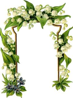 Gif_Paradise: Lily of the Valley Borders For Paper, Borders And Frames, Botanical Flowers, Flowers Nature, Boarder Designs, Printable Frames, Spring Images, Decorative Borders, Botanical Drawings