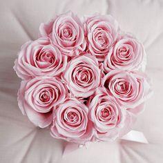 Rosa ist die Farbe der Weiblichkeit und steht allgemein für Dankbarkeit und Glück. Bei uns bildet sie das 'Gift of Grace'. Erfahre mehr dazu unter infinity-flowerbox.com
