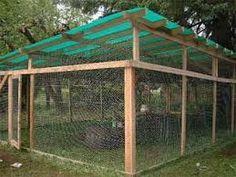 Resultado de imagem para cat enclosures