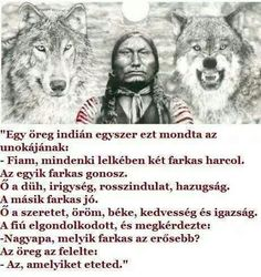 Two Wolves - which one do you feed? Two Wolves Story, The One You Feed, Great Quotes, Inspirational Quotes, Native American Wisdom, Wolf Quotes, Jealousy, Positive Affirmations, Love Life