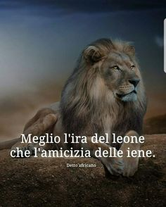 Wise Quotes, Inspirational Quotes, Success Quotes, Qoutes, Motivational Quotes, Italian Life, Lion Of Judah, Photo Quotes, Proverbs