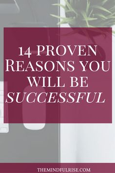 14 Proven Reasons You Will Be Successful- The Mindful Rise