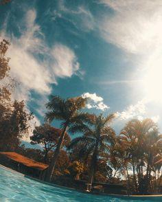 Sunny Day - the sun.