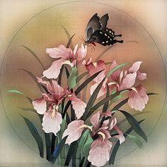 black-butterfly_iris-silk.jpg (1575×1575)