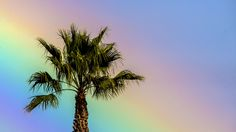 - Arco-íris brilha no céu de Seal Beach Pier, em Seal Beach, Califórnia. Foto: Matt Masin / AP
