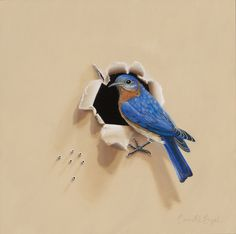 Eastern Bluebird, A Backyard Bird Oil Painting by Camille Engel - Backyard Bird Oil Paintings by Camille Engel - Gallery - Whatbird Community Board Mural Painting, Artist Painting, Painting Prints, Painting & Drawing, Bird Paintings, Mural Wall Art, Bird Art, Canvas Frame, Canvas Canvas