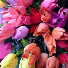 VOORJAAR !!  #viacannellacuijk #woonwinkel #kookwinkel #kinderwinkel #bloemen