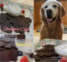 Strawberry Chips w/ Banana Dip: Sugar The Golden Retriever Simply blend some strawberries, with freshly squeeze orange juice, and honey. Spread it thinly on a baking mat (we use silpat) or parchment paper. Bake it at 250 degrees for 1 -1 1/2 hrs. (depending on your oven). Banana Dip = blended banana and yogurt