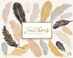 Watercolor Feather Clipart. Pastel Boho Clip Art. Gold Watercolour Feathers. Blush, Gray, Pink, Black, Cream, Gold Hand Painted Clip Art.