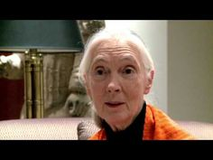 Jane Goodall Comments on the BC Trophy Hunt
