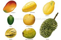 Les fruits tropicaux 4