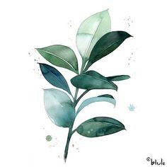 Watercolor Plants, Watercolor Leaves, Watercolor Animals, Watercolor Background, Watercolor Landscape, Abstract Watercolor, Simple Watercolor, Watercolor Illustration, Tattoo Watercolor