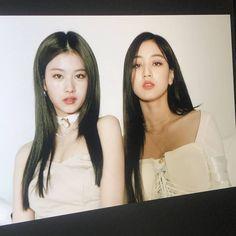 South Korean Girls, Korean Girl Groups, The Love Club, Love Of My Life, Love Her, Real Life, How High Are You, Twice Jihyo, Minatozaki Sana