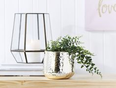 Discover our range of beautiful decorative ceramic and glass vases online or in-store. Shop the range and complete your room with these elegant vases. Ceramic Pots, Ceramic Decor, Style Challenge, Dimples, Glaze, Glass Vase, Bedroom Decor, Ceramics, House Styles