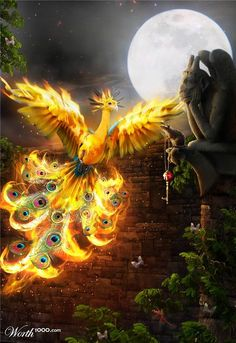 Myth Creatures: Phoenix: The Sacred Fire Birds Mythological Creatures, Fantasy Creatures, Mythical Creatures, Phoenix Images, Phoenix Art, Fantasy Dragon, Dragon Art, Fantasy Images, Fantasy Art
