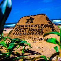 Come enjoy the beautiful unspoiled tropical beaches of Zinkwazi when you stay at Casa Di Cattleya