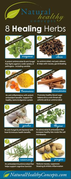 8 Healthy Herbs That Heal