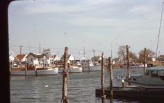 Red Border Freeport Boats Docks Houses 35mm Slide 1951 Long Island NY